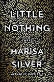 """Little Nothing"" by Marisa Silver, 336 pp., Blue Rider Press, $27"