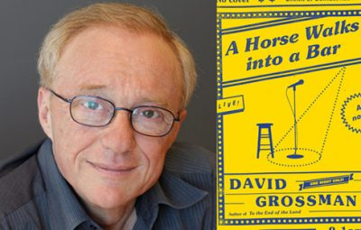 David Grossman Author